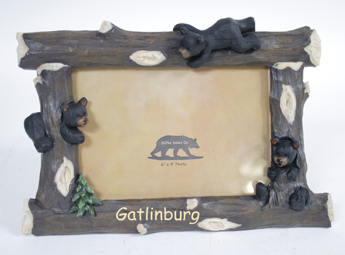 X8570 Gatlinburg Bear Frame